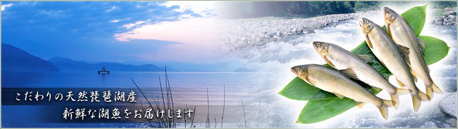 こだわりの天然琵琶湖産、新鮮な湖魚をお届けします